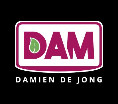 Logo Damien de Jong